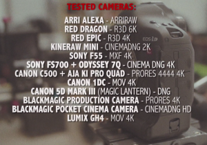 12 cameras test 4K Shooters GH4, BMPC, BMPCC, Alexa, RED EPIC, Red Dragon, FS700, F55, Canon C500, 5D Mark III