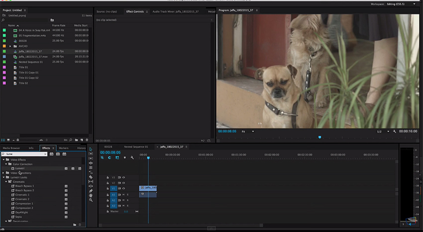 Improting_LUT_in_Premiere_Pro_CC