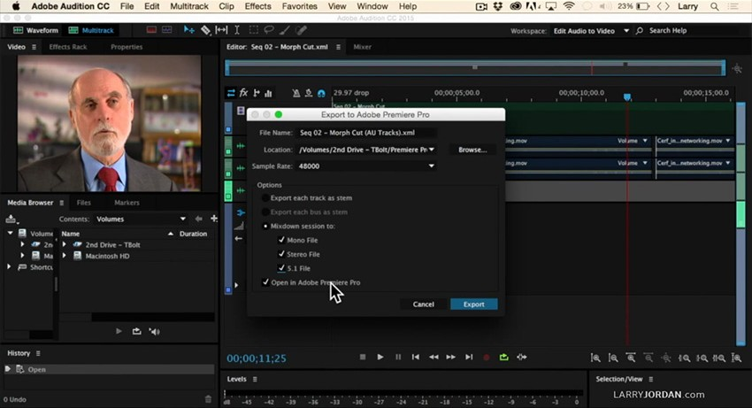 Adobe_Audition_Audio_Export