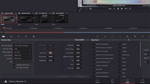 Resolve_12_CinemaDNG_Workflow_05