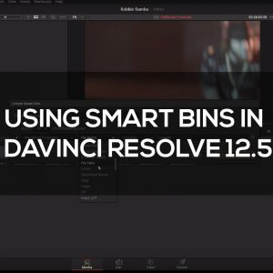 Working_with_Smart_Bins_in_Resolve_12.5_Square