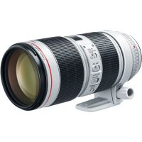 Canon EF 70-200mm f2.8 Mark III