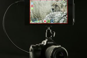 Some Sony A7S and Atomos Shogun 4K Footage For Your Consideration