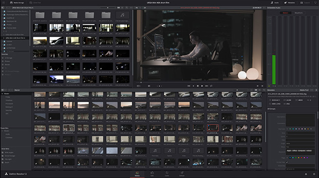davinci_resolve_12-5-2_raw_media