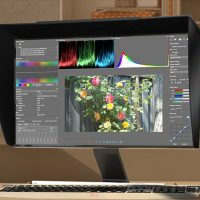 Blackmagic Raw 3:1 and 4:1 to Premiere Pro CC | | 4K Shooters