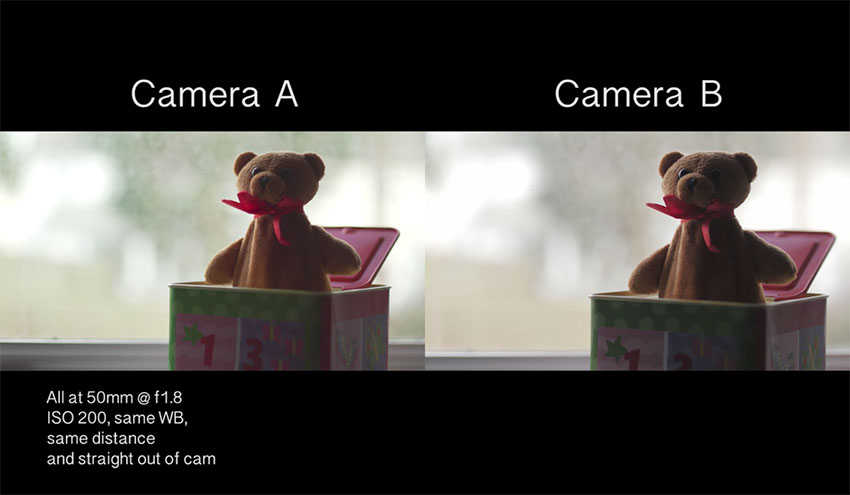 Full Frame Vs Micro Four Thirds Sensor Size Can You Spot