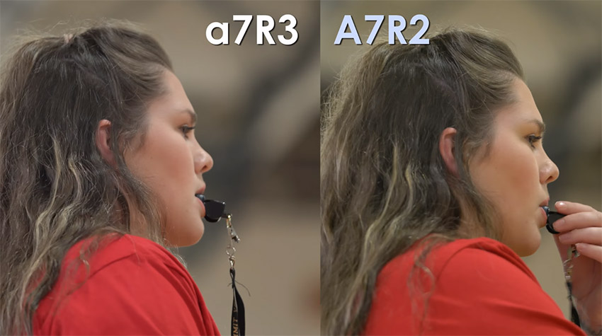 Comparing the Sony A7RIII and A7RII Colors When Shooting Video | 4K