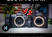 Canon EOS R vs Sony A7III for Shooting Video