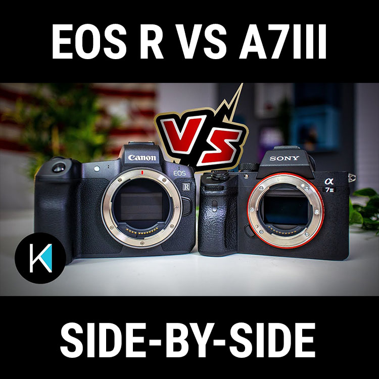 Canon EOS R vs Sony A7III for Shooting Video | 4K Shooters