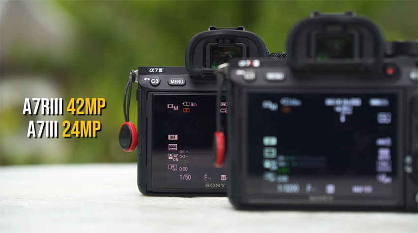 Sony A7III vs A7RIII - Which One to Pick? | 4K Shooters