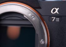 Instant Extra Zoom on Your Sony A7III