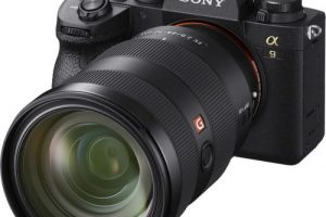 Sony a9 II: A (Disappointing) Minor Update to a Flagship