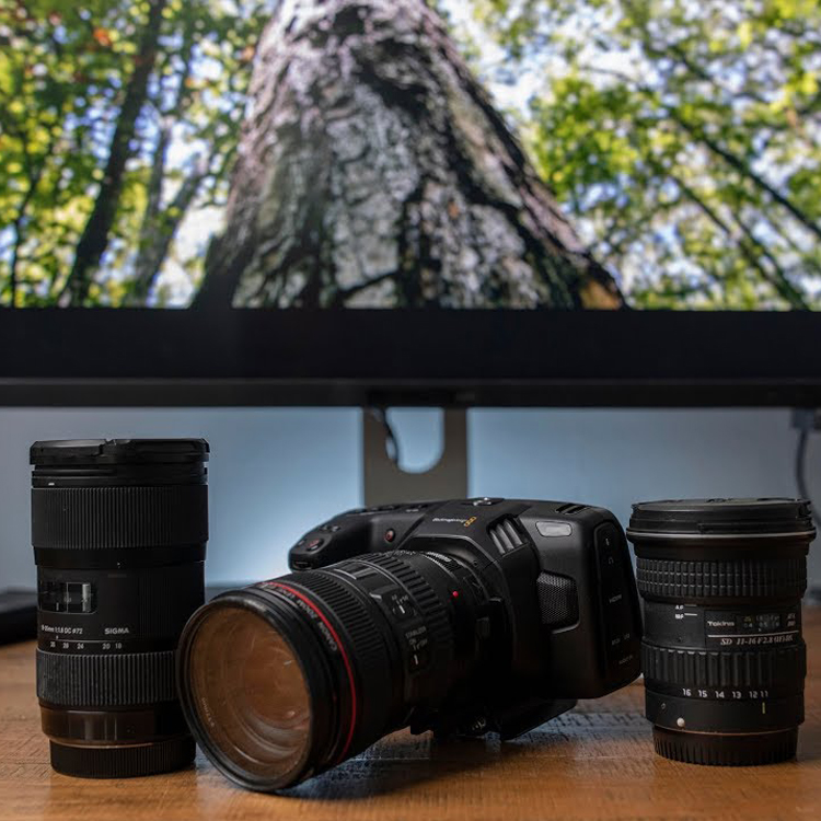 Three Must Have Lenses For The Bmpcc 4k And 6k 4k Shooters