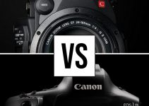 1DX Mark III vs EOS C200 – Which One Should You Choose?