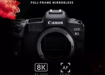 Canon EOS R5 Will Shoot 8K Video Up to 29.97fps With No Crop