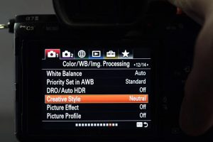 Best Sony A7III Picture Profile to Use on the Fly