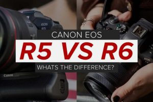 Canon EOS R5 vs EOS R6 – What are the Differences?
