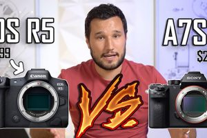 Should You Buy the EOS R5 or Wait for the A7S III?