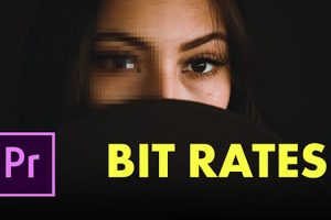 How to Choose the Optimal Bitrate When Exporting Video in Premiere Pro CC